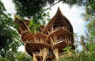 Woman Builds Bamboo Homes Leaving Behind Fashion Career